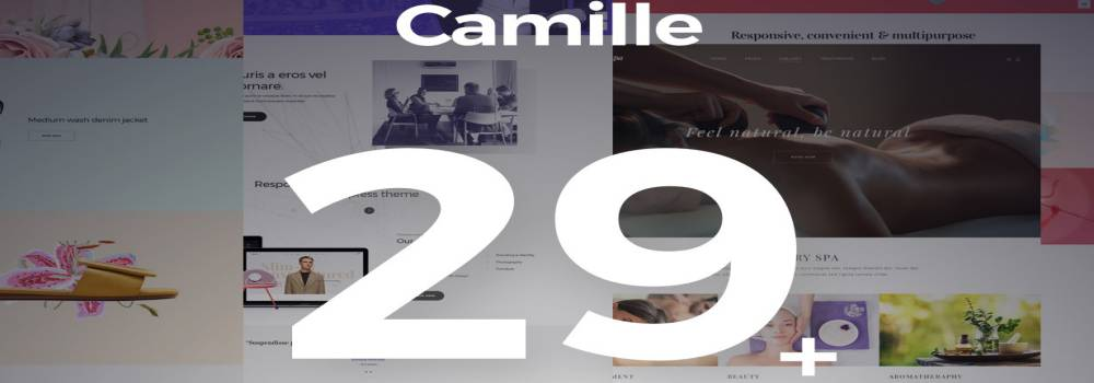 Camille - Multi-Concept WordPress Theme