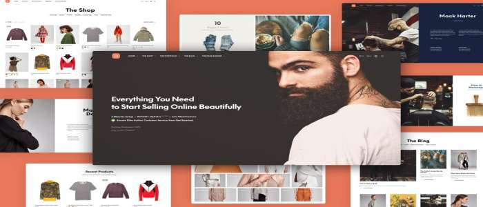 Shopkeeper - eCommerce WordPress Theme Demo Views