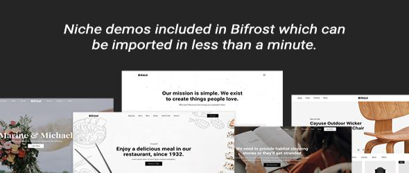 Bifrost WordPress Theme features